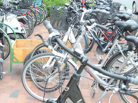 Zahlreiche Fahrräder stehen beschädigt am Waldweg - Foto: JPH