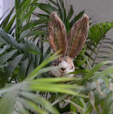 Den Osterhasen haben wir auch schon entdeckt: Er scheint auf dem Weg nach Sehnde zu sein – Foto: JPH