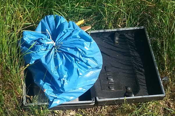 Die Natur soll wieder vom Müll befreit werden - Foto: B. Teiß