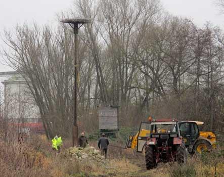 Dann stand das neue Nest in acht Metern Höhe - Foto: Deters-Eickemeyer