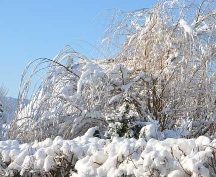 Im Winter besteht nicht nur für Privatpersonen Räumpflicht - Foto: JPH