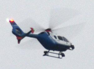 Die Jagd erfolgte auch aus der Luft - Foto: JPH